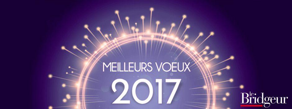 Bannière meilleurs voeux 2017