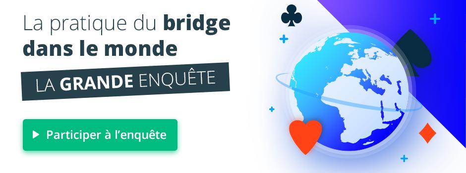 Bannière enquête bridge
