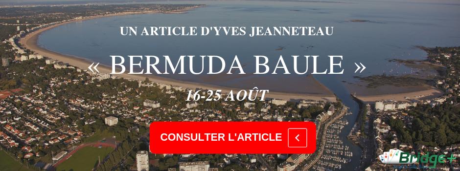Bannière Bermuda Baule Yves Jeanneteau