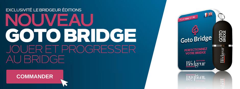 Bannière Goto Bridge Le Bridgeur