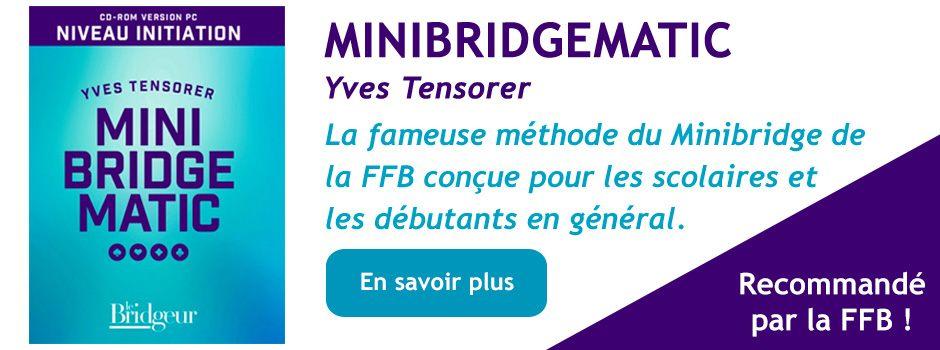 Bannière Minibridgematic